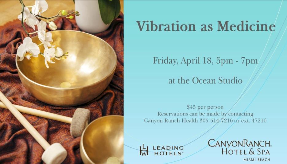 Vibration As Medicine with Michelle Alva and David Jesse