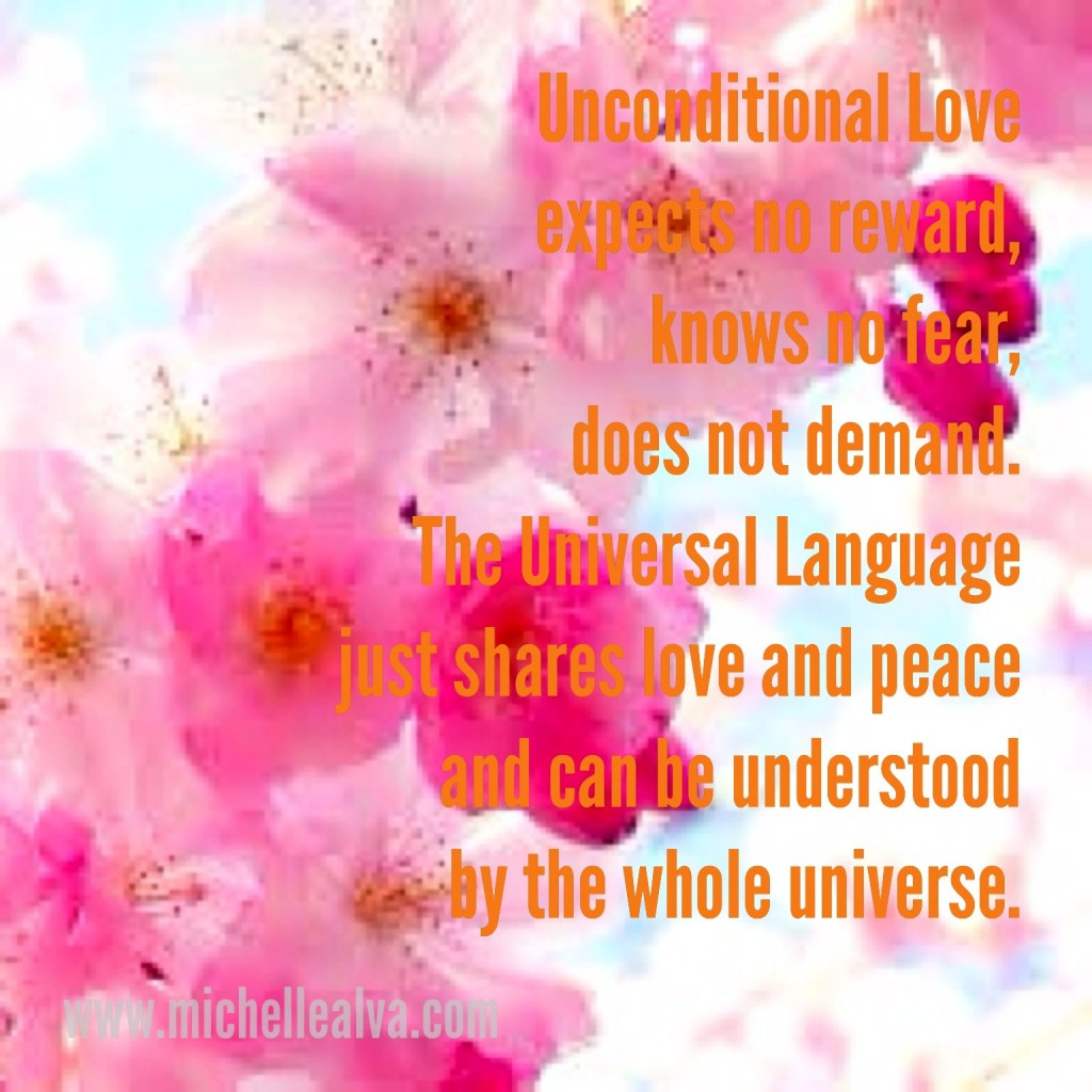 unconditional love michelle alva