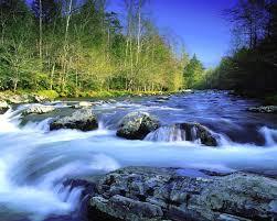Flow Like A River www.michellealva.com