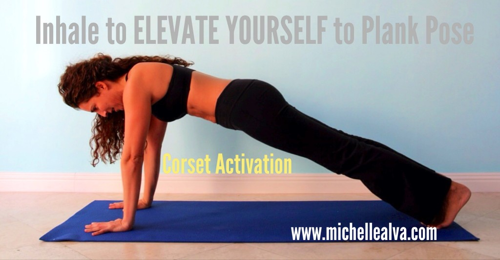 Yoga Pose Plank Pose